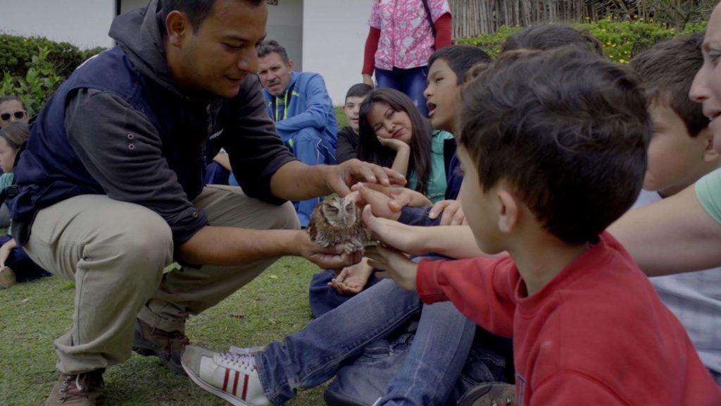 Biocontacto como parque educativo de la fauna silvestre